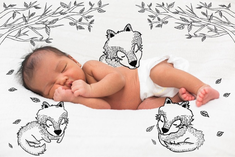 newborn baby sleeping with wolf illustrations