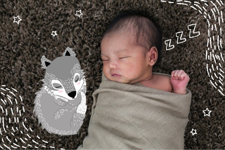 newborn baby sleeping with wolf illustration