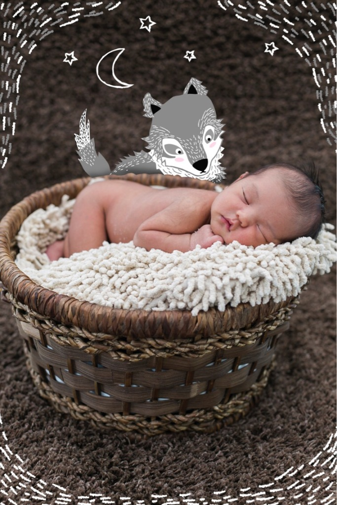 newborn baby in basket with wolf illustration